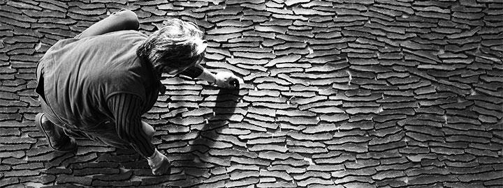 D'APRÈS NATURE, REGARD D'ARTISTE : MARC DIDOU, à partir du 18 mai au Domaine de Trévarez