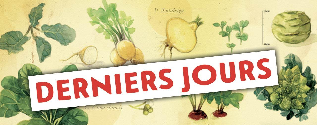 """""""Espèce de ... Saison 3 : Brassicacées !"""" à l'Abbaye du Relec à partir du 1er juin"""