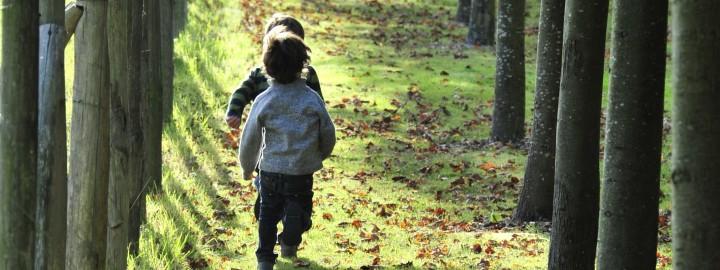 PROGRAMME DES VACANCES SCOLAIRES DE LA TOUSSAINT, du 19 octobre au 3 novembre