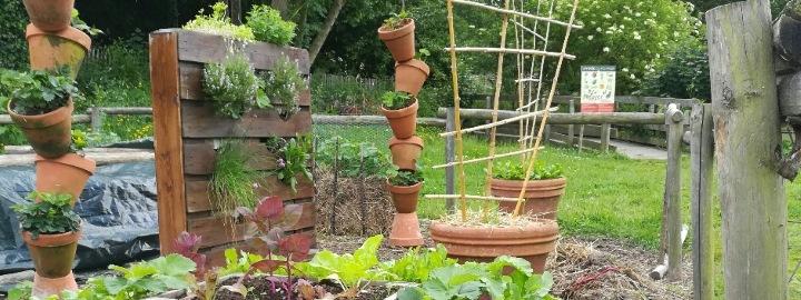 Le potager saison 1 esp ce de courges exposition for Le jardin quand planter