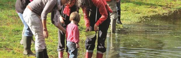 Les petites bêtes de l'eau ♦ POUR LES FAMILLES