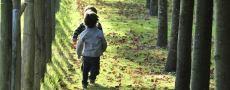 PROGRAMME DES VACANCES DE LA TOUSSAINT, du 17 octobre au 1er novembre